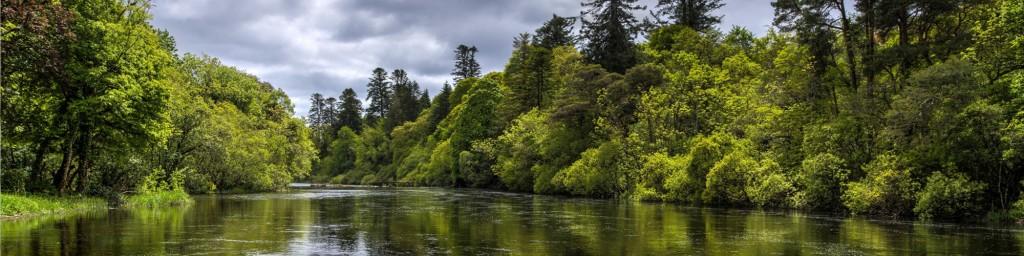 Verde - River Cong