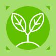 Verde Environment